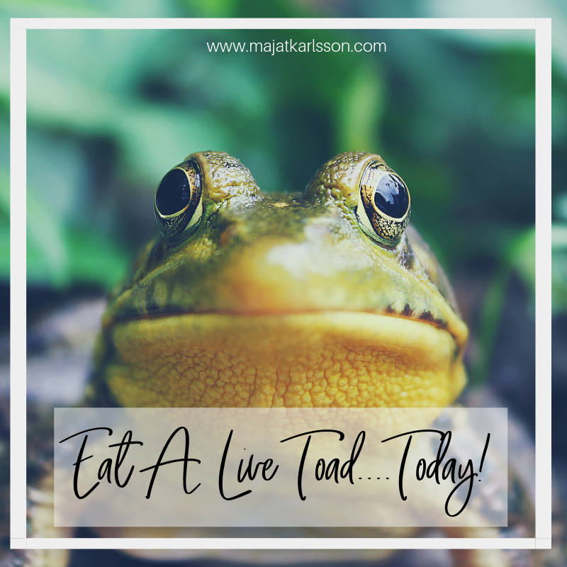 Eat A Live Toad…Today!