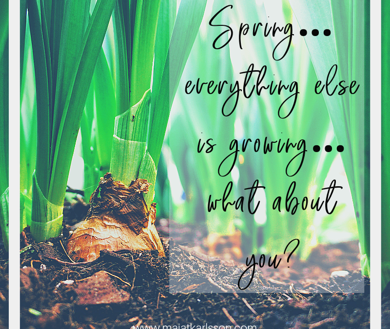 Spring…everything else is growing…what about you?